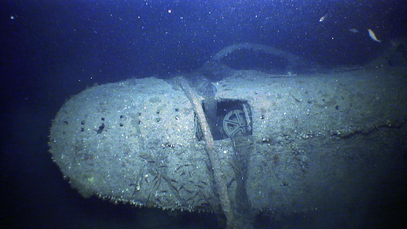 Silence of the Deep